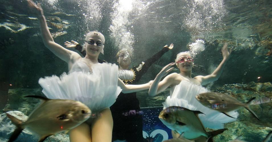 Garotas ucranianas fazem performance no balé aquático em um tanque de peixes montado em Seul, na Coreia do Sul