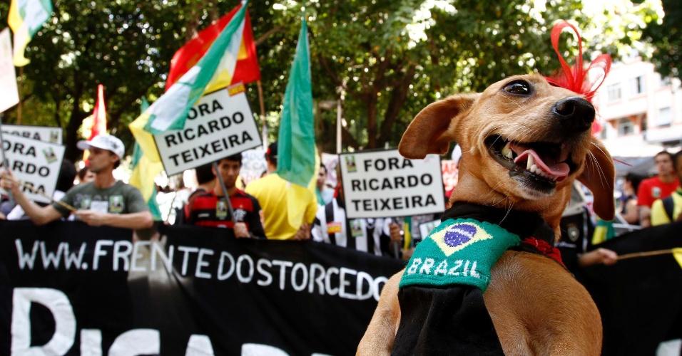 Cão marca presença em protesto contra Ricardo Teixeira no Largo do Machado, no Rio de Janeiro (30/07/2011)