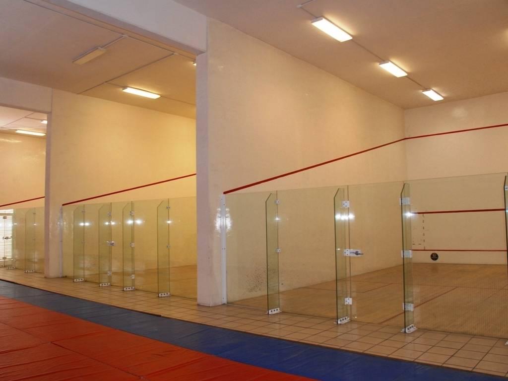 Complexo de squash