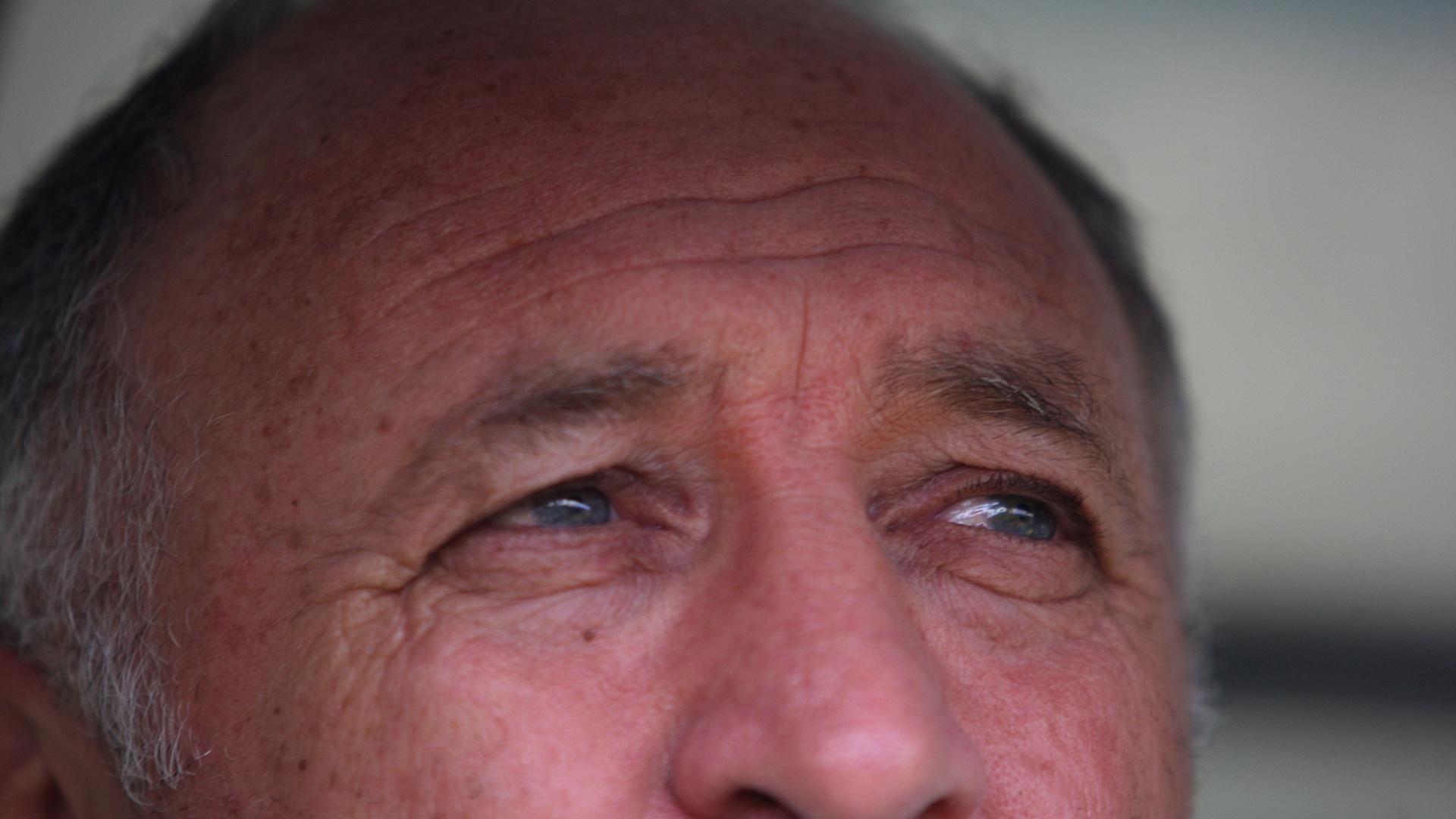 Técnico Luiz Felipe Scolari observa partida entre Palmeiras e Figueirense, no Canindé