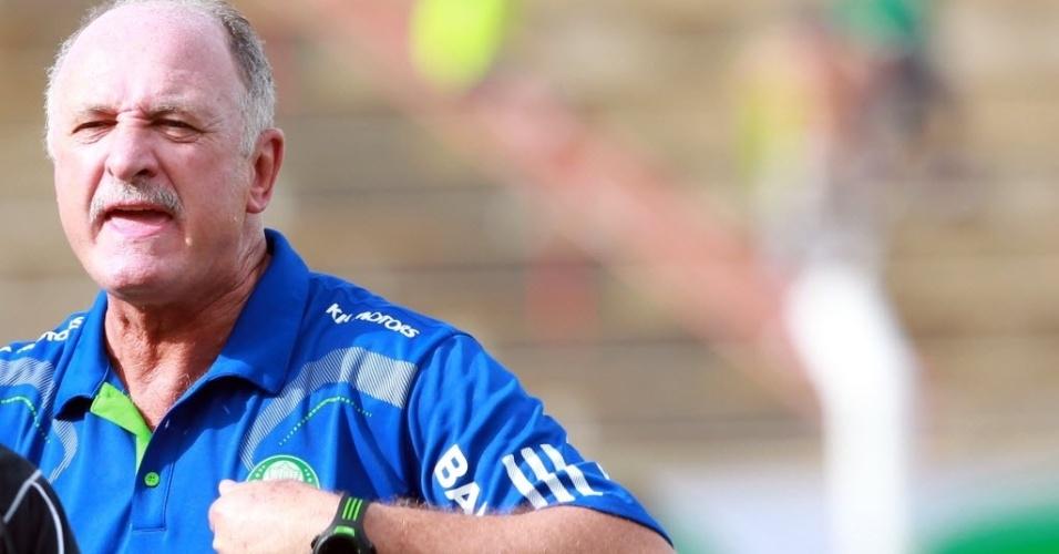 Luiz Felipe Scolari criticou arbitragem e considerou Palmeiras prejudicado no clássico
