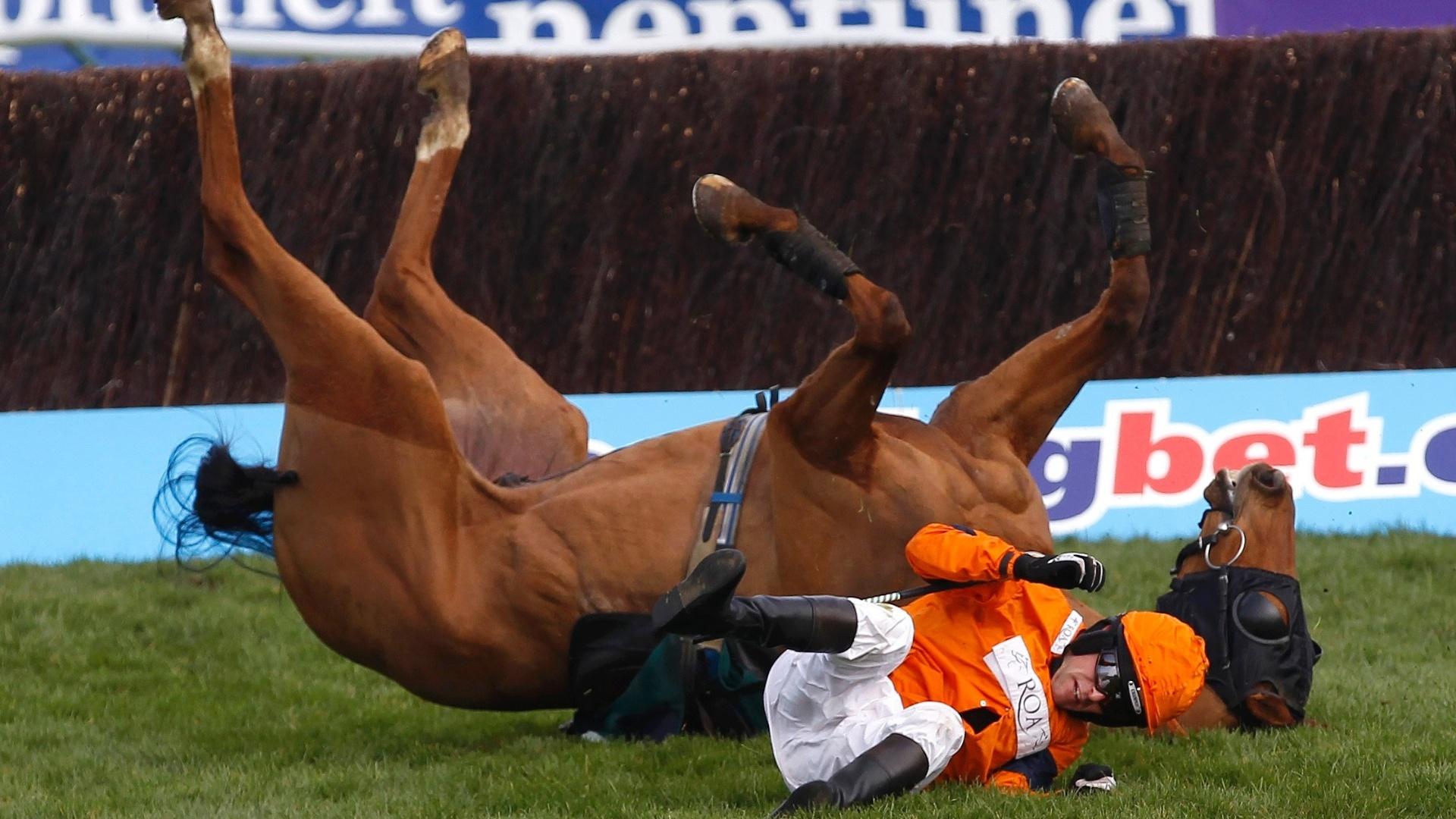 Competidor sofre queda durante corrida no festival de Cheltenham, no Reino Unido