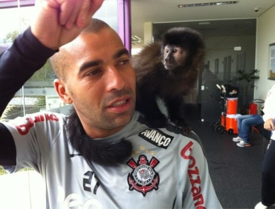 Atacante Emerson Sheik leva sua macaca Cuta para o treino do Corinthians