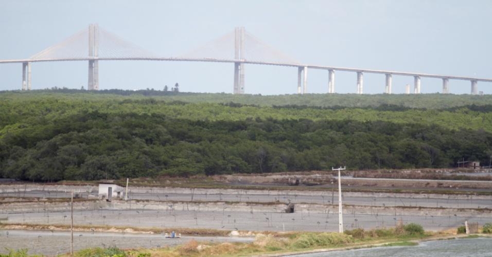 Mangue do Rio Potengui, em Natal (RN), está ameaçado por obra para a Copa do Mundo. Drenagem da área do Arena Dunas pode levar esgoto para o rio.