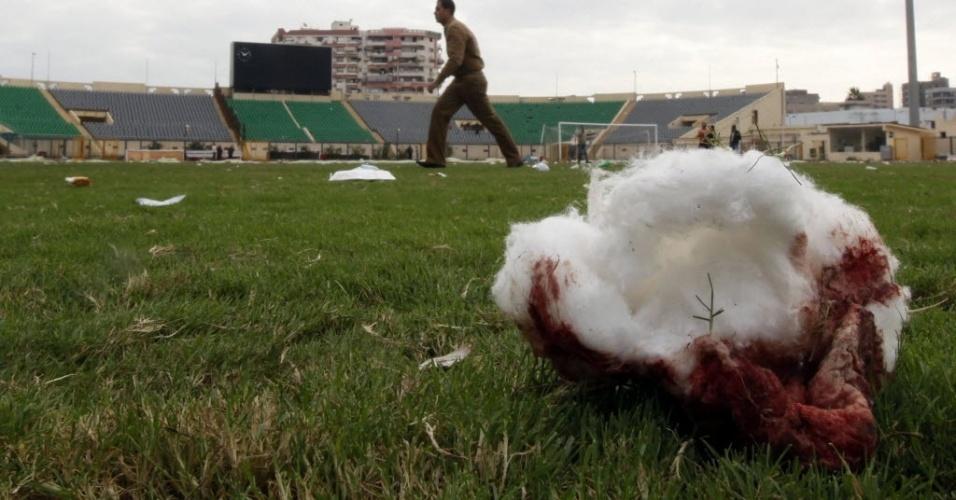 Algodão com sangue dentro do campo no Egito, palco de batalha com mais de 70 mortos