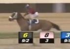 """Blog: Cavalo cai, causa efeito dominó, e """"sobrevivente"""" corre sozinho para vencer prova nos EUA; veja - Reprodução de TV"""